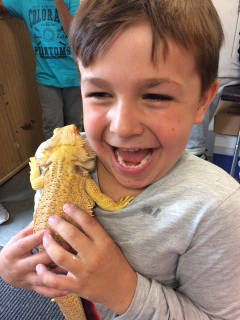 boy with gecko