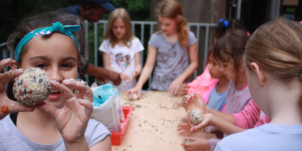adventurers making bird feeders